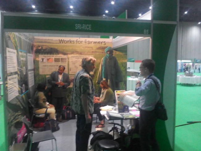 Earth Links at International Rice Equipment Meetings