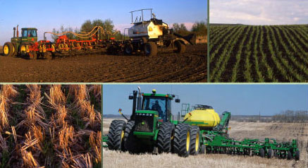 Digging into Conservation Agriculture Websites and Publications