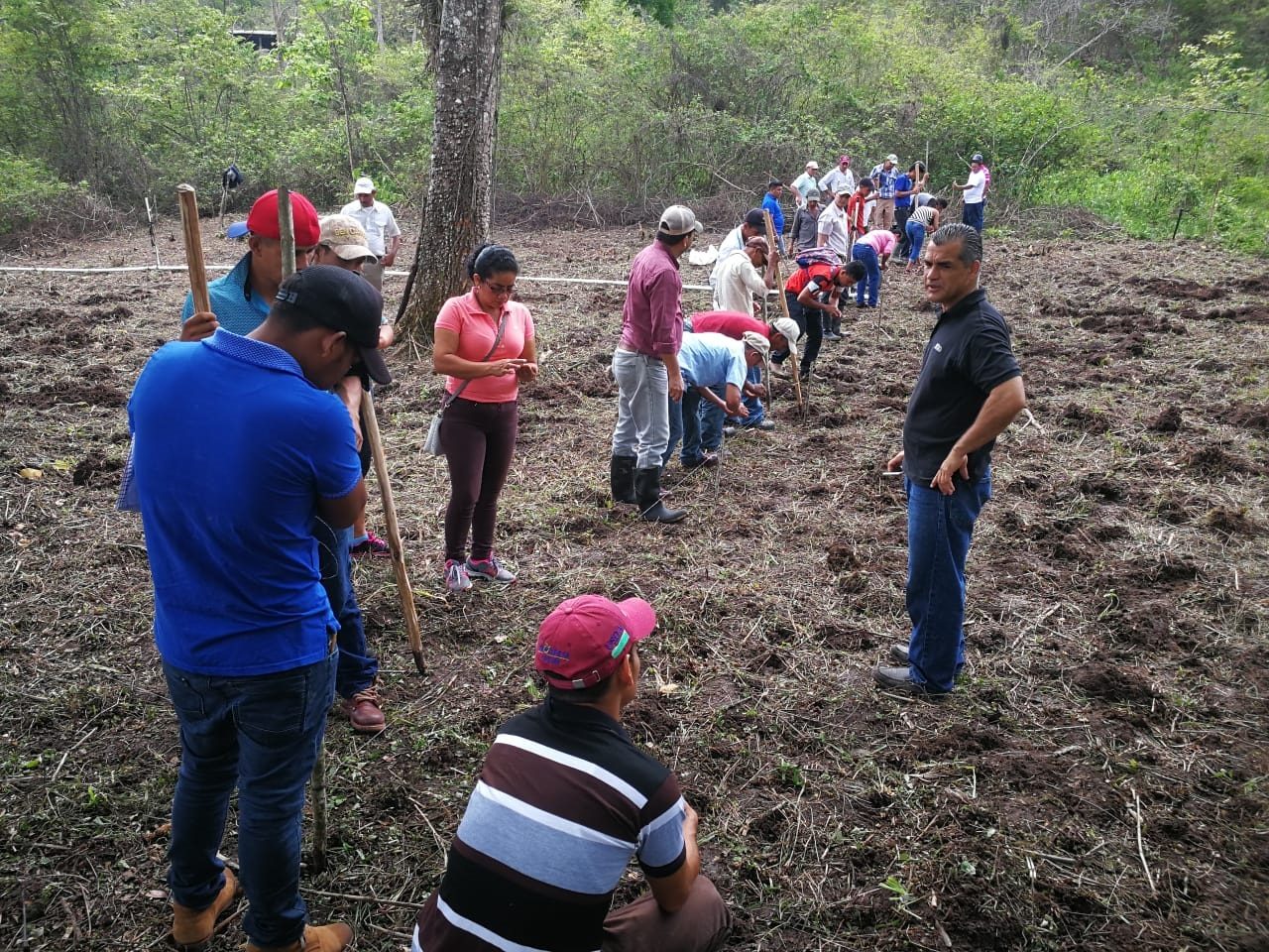 Our Recent SRI Training for Smallholder Rice Farmers in Nicaragua