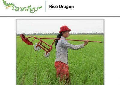 1419-rice-dragon-weeder-1-638